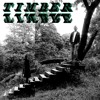 Timber Timbre - Lay Down In the Tall Grass