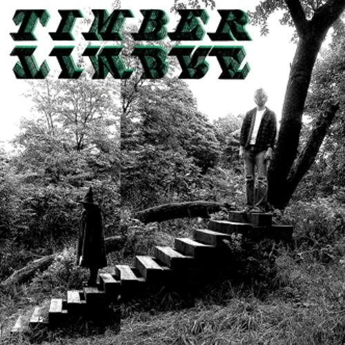 Timber Timbre - Magic Arrow