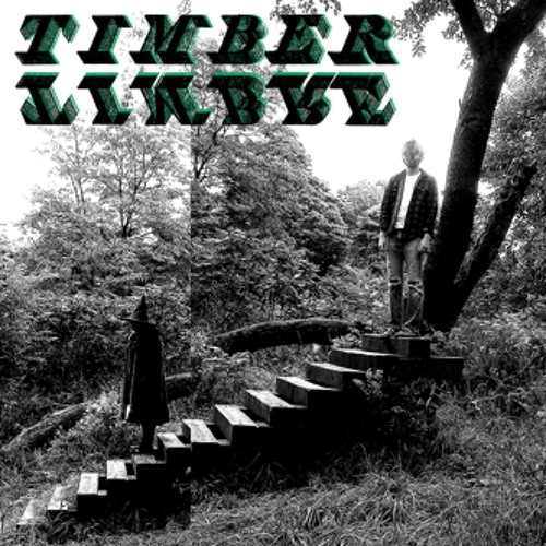 Timber Timbre - Trouble Comes Knocking