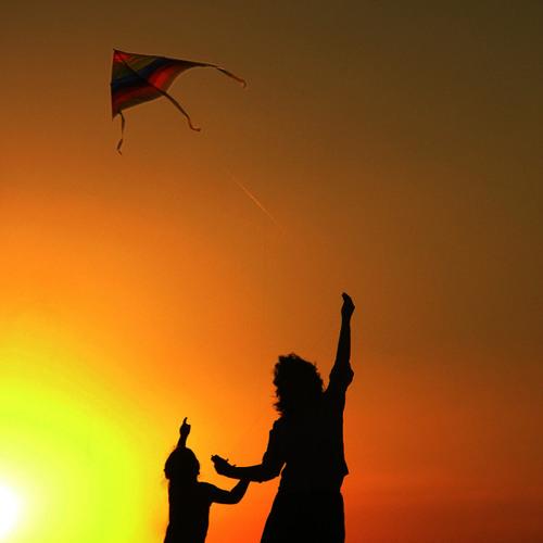 Kites- Rm264