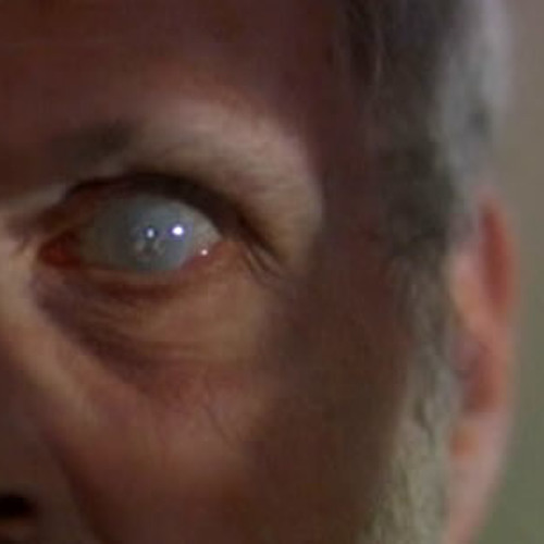 Glass Eye Gleaming