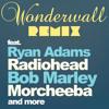 Wonderwall Remix