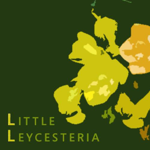 Little Leycesteria