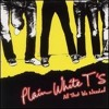 Plain White T's - Hey There Delilah