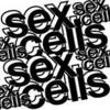 SEXCELLS (FEAT RYAN DEWY & 9FINGAZ & Dj L.T BALKIN)