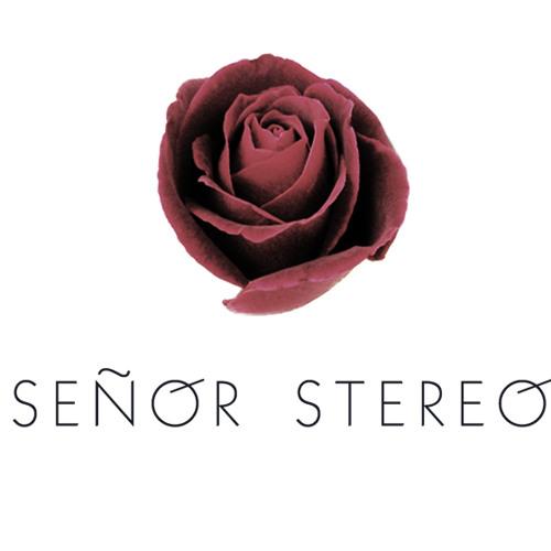 Señor Stereo - Hot Damn! (Gigamesh Remix)
