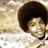 Michael Jackson  The Soulful Years