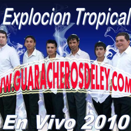 EXPLOSION TROPICAL EN VIVO 2010