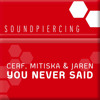 Cerf, Mitiska & Jaren - You Never Said (Dash Berlin Radio Edit)