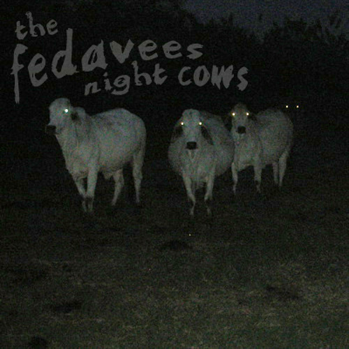 Walk On By (night cows)