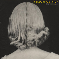 Yellow Ostrich - Whale