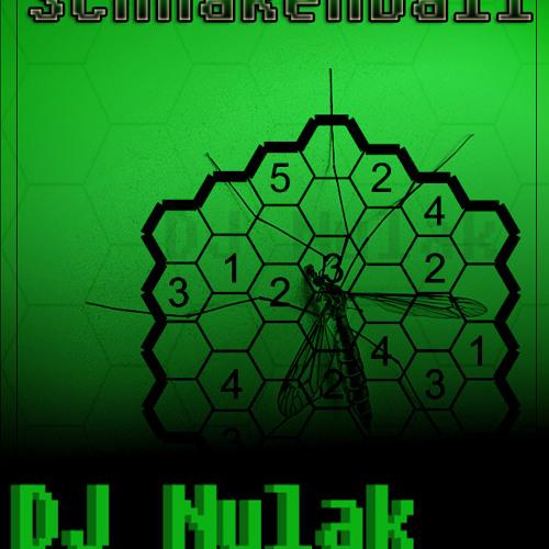 DJ Nulak-Schnakenball