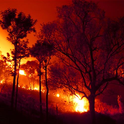 Stevie Nicks - Fire Burning (ZitanB Remix)