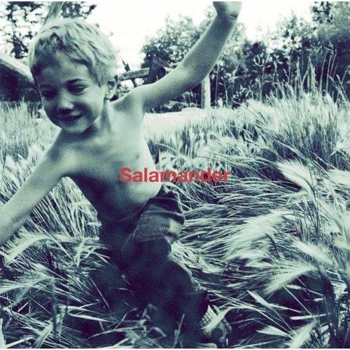 ELLEGARDEN - Salamander 707SNR Remix by Novoiski | Free ...