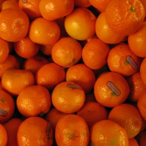 Clementine Blues