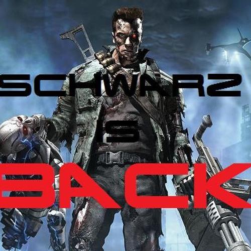Schwarz Is Back (Original Mix)