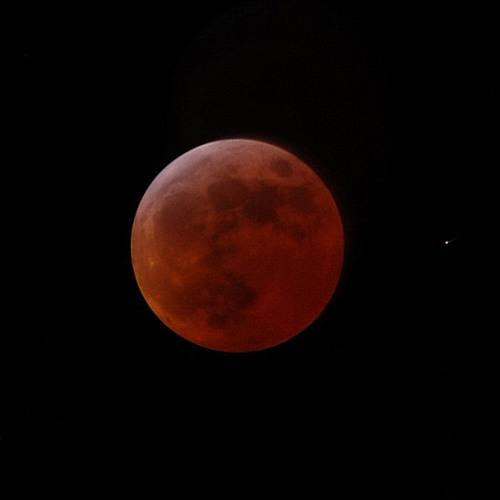 Lucid Picnic - Lunar Eclipse