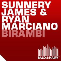 Sunnery James & Ryan Marciano - Birambi