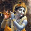 Krishna Fast Track