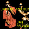 Like A Girl Gone Wild(Far East Movement x Lil Wayne x Ludacris)