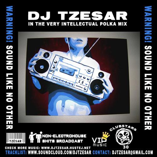 TZESAR - Very Intellectual Polka (CLUBSTARS VIP music vol.30)