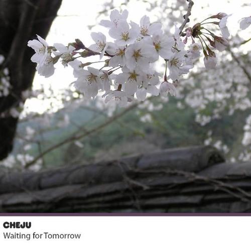 Cheju - Neon Drift