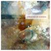 09. Sawdust And Diamonds - Ben Sollee