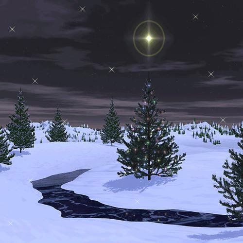 Oh, Holy Night  (Christmas Magic & Even More Christmas Magic 2008/2009)