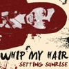 Whip My Hair (FREE Download)