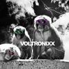 Voltronixx - Notre Bam ( Air Wankers remix )