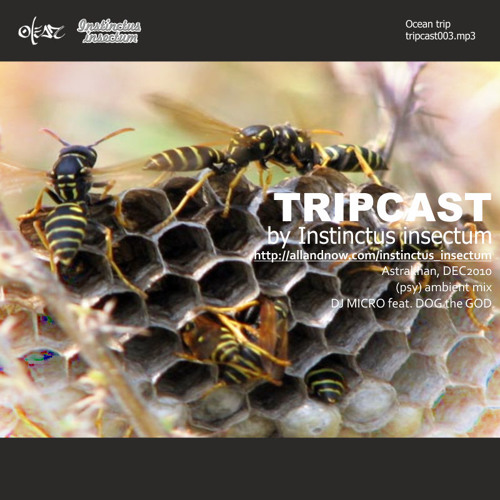 Tripcast003