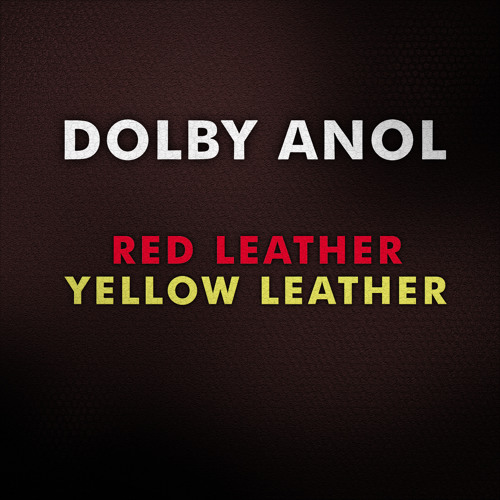 Dolby Anol-Red Leather (Kid606 & the Acid Trap remix)
