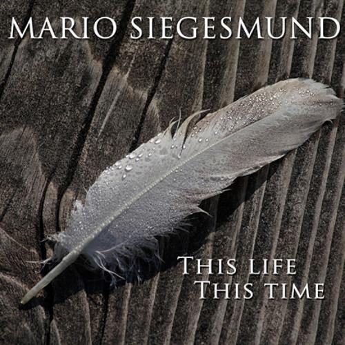 Mario Siegesmund - Driving home