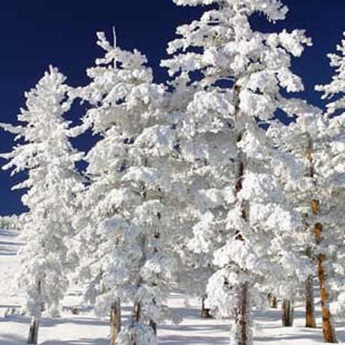 Jäääär-Lumevärv