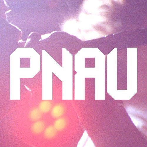 PNAU - The Truth (Sam La More Remix)