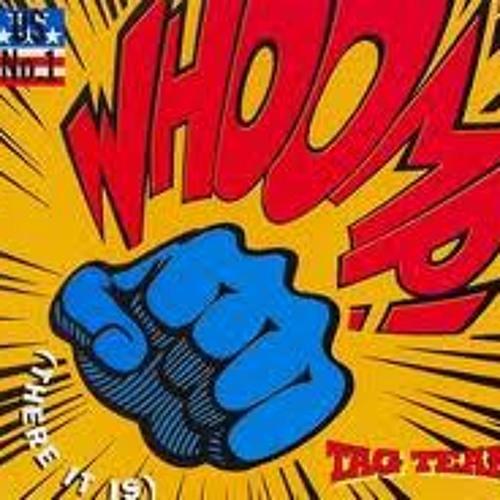 Tagteam - whoomp F U!(Danizm ceelo mash)