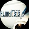 Andre Detoxx - Flight 313 - Popkids Vibes Deeper Dub [Tanztone Records]