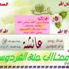 Download الله الله ياربى ...مشارى راشد اغنية يا مصر