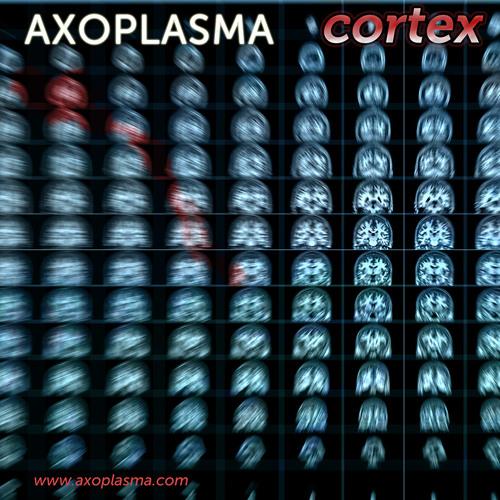 Axoplasma - Antiport