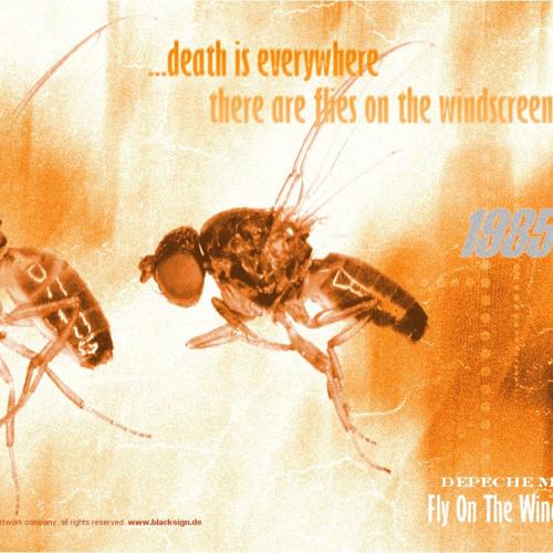 Depeche Mode - Fly on the Windscreen [Josh Molot MIX]