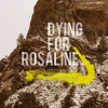 Dying For Rosaline - You Make Me ( Live Demo )