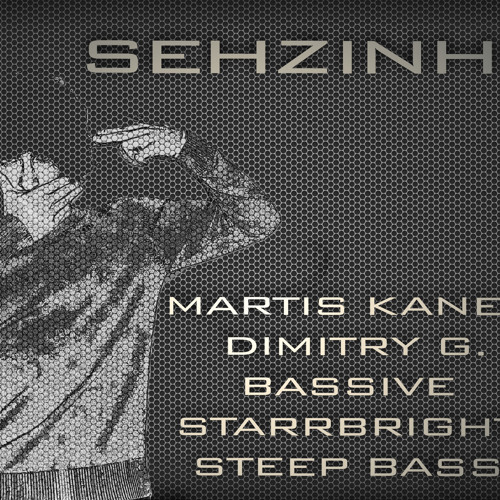 Martis Kaneem, Dimitry G, Bassive, StarrBright & Steep Bass Project - SEHZINHO