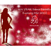 H.N.YEAR Dance Paradise Luxury Mix 2011 - Mixed by DJ Lion