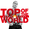 Sonny Flame  - Top Of The World (Radio Version)