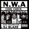 N.W.A  FT. SNOOP DOGG - CHIN CHECK (Kush ' Resurection) By DJ BLAZE