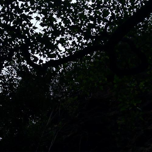 Mick Finesse - Velvet Lawnmower (Refuge 'Dig Deeper' remix)