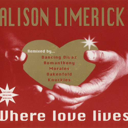 Alison Limerick - Where Love Lives (Robbie Styles Remix)