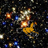 Unhappy star horse