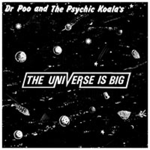 Dr Poo and the Psychic Koala's: The Universe is Big