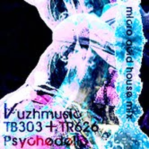 Vuzhmusic TB303+TR626 Psychedelic micro acid house mix fix